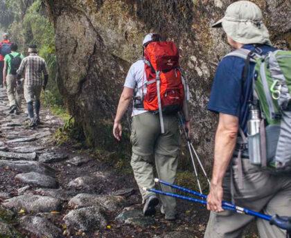 Camino Inca 2D / 1N